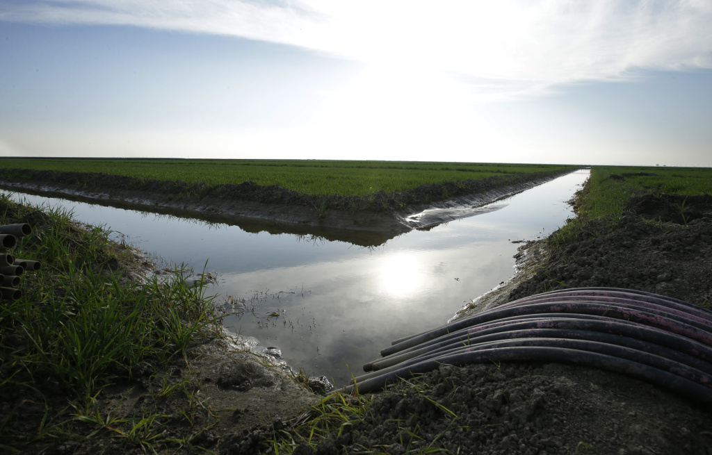 FILE - In this Feb. 25, 2016, file photo, water flows through an irrigation canal to crops near Lemoore, Calif.
