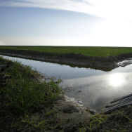 In this Feb. 25, 2016 photo, water flows through an irrigation canal to crops near Lemoore, Calif.