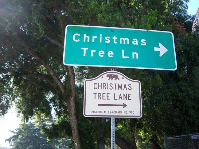 mile of christmas trees postcard