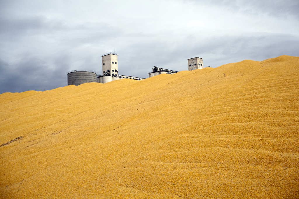 Surplus corn is piled outside a storage silo in Paoli, Colo. Do federal farm subsidies encourage the production — and perhaps over-consumption — of things that we're told to eat less of, like high-fructose corn syrup or meat produced from livestock raised on subsidized grains?