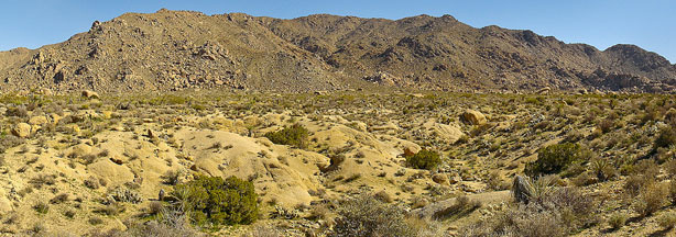 File photo: Eagle Mountain in Joshua Tree