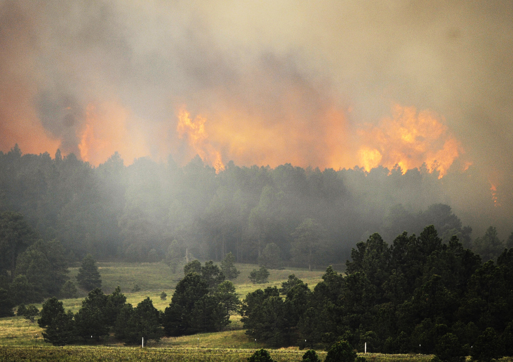 Firefighters attacked dozens of wildfires in California, Colorado and other Western states where hot and windy conditions persisted Thursday, including two fires that forced hundreds of people out of their homes in Colorado. (Photo: Fire from the Black Forest Fire burns behind a stand of trees June 12, 2013 near Colorado Springs, Colorado.)