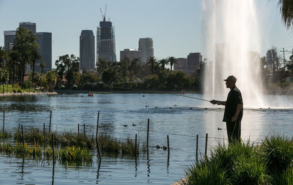 In this file photo, Joe Carrillo tries his catch and release fly fishing at the Echo Park Lake in Los Angeles Monday, Feb. 8, 2016. Last month was the second warmest February on record and drier than anticipated, spoiling hopes of drought-busting rain predicted due to the El Niño weather pattern.