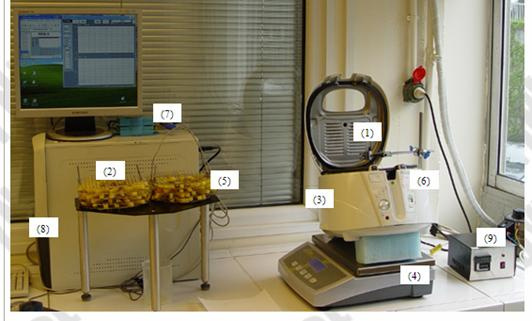 The experimental apparatus: (1) Agitator, (2) Basket for potatoes mounting, (3) Fryer, (4) Electronic Balance, (5) Thermocouple mounted at the potato's center, (6) Thermocouple mounted in the bulk oil for the recording of bulk oil profile, (7) Data Acquisition Unit, (8) Data Storage Unit, (9) Temperature controller.