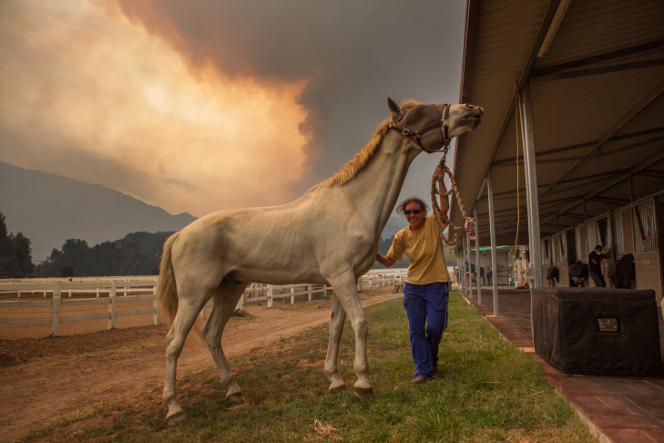 Lesly Vanderwhal waits to evacuate her horse from Shelburne Farms in Hidden Valley, Calif., on May 3, 2013, as the Springs Fire rages.