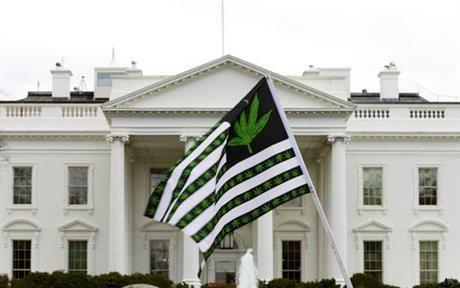 A demonstrator waves a flag with marijuana leaves on it during a protest calling for the legalization of marijuana, outside of the White House in Washington on April 2, 2016. Six states that allow marijuana use have legal tests for driving while impaired by the drug that have no scientific basis, according to a study by the nation's largest automobile club that calls for scrapping those laws.