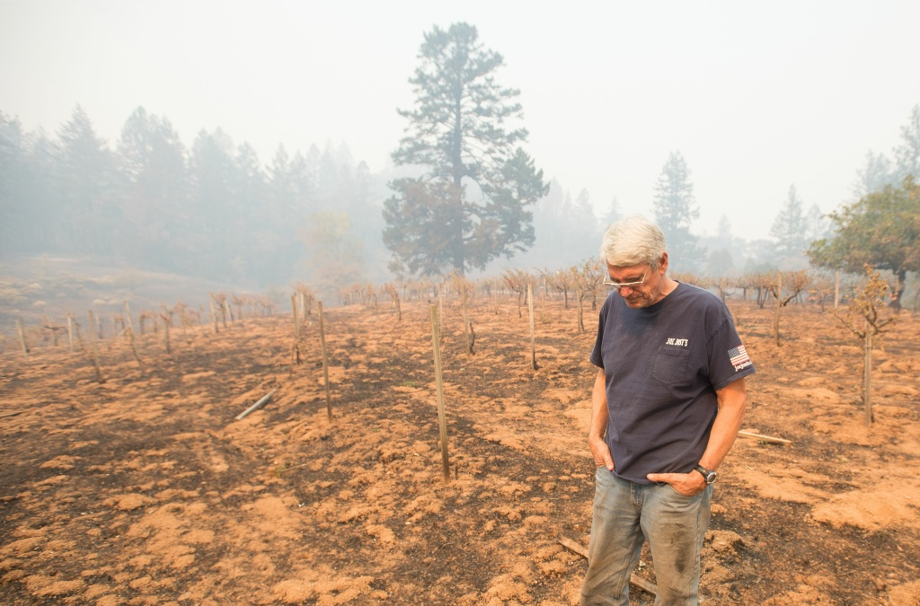 Property owner Chris Schrobilgen stands in his neighbor's burned grape vineyard in Calistoga, California on October 11, 2017.