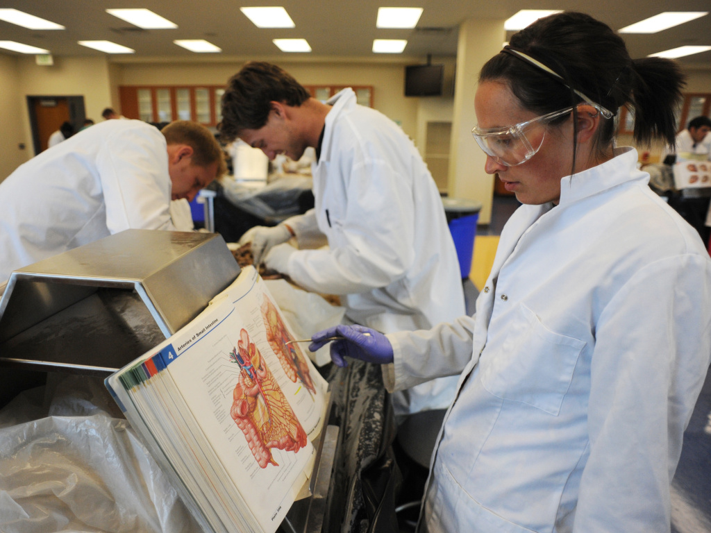 In this 2009 photo, Stephen Cox (left), Mike Forte (center), and Maria Gallo (right), all medical students then, were busy studying a cadaver in the lab at Rocky Vista University's Parker, Colo., campus. Rocky Vista, a for-profit institution, last month received the green light for an accredited satellite campus in Billings, Mont.