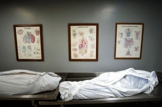 Posters showing internal body parts hang above corpes in a hallway at the Los Angeles County Coroners Office April 16, 2002 in Los Angeles, CA.