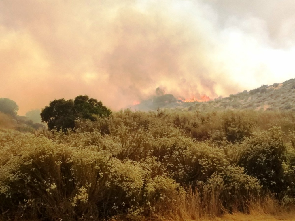 Car crash ignites 5000-acre brush fire in California