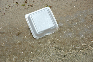 A polystyrene container lies on a beach. File photo.