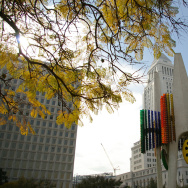 Built in 1975, the Triforium sits atop the Los Angeles Mall at the corner of Main and Temple in Downtown Los Angeles
