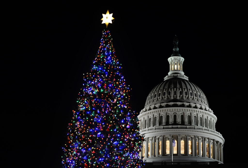 Capitol Christmas Tree Is Californian