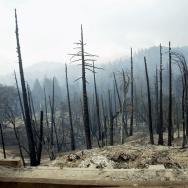 Wildfires Arson Murder