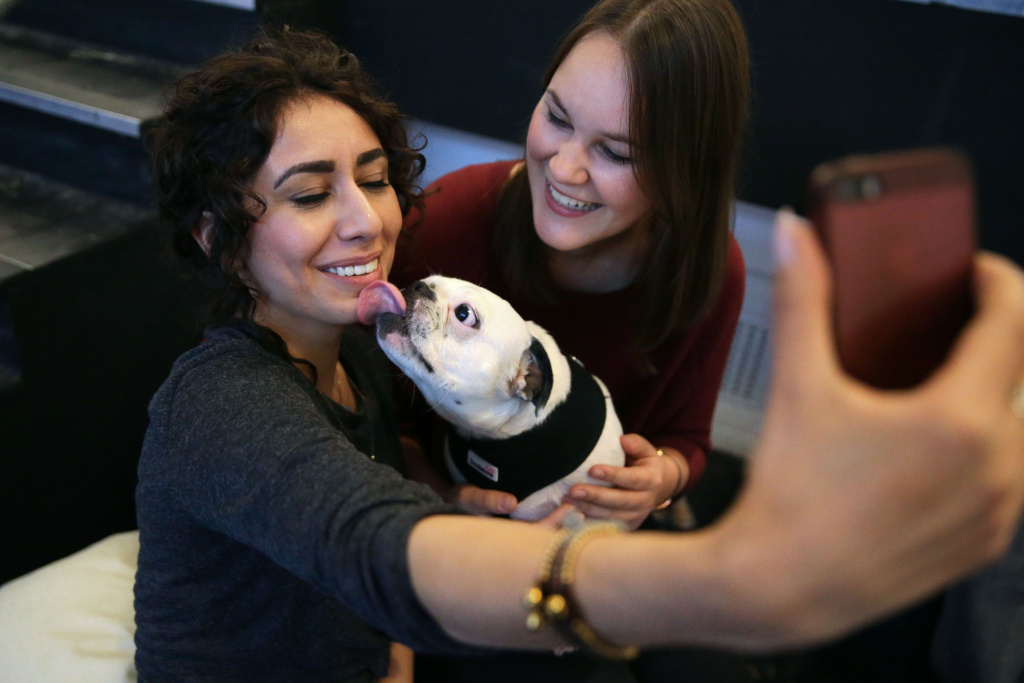 A visitor takes a selfie with her pug dog at a pop-up Pug Cafe in Brick Lane, east London on October 27, 2017.