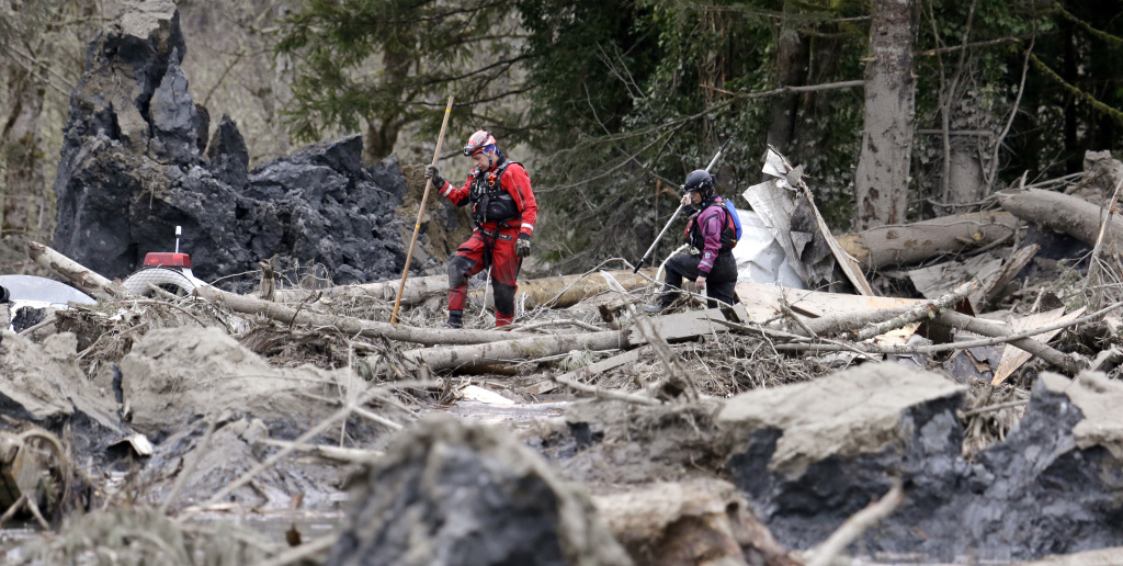 Searchers look through debris from a deadly mudslide Tuesday, March 25, 2014, in Oso, Wash. At least 14 people were killed in the 1-square-mile slide that hit in a rural area about 55 miles northeast of Seattle on Saturday. California is sending 18 search and rescue specialists to help coordinate and support operations.