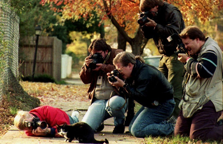 Photographers surround Socks, the cat who belongs