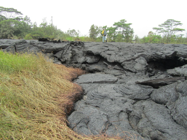 Lava flow from the Kilauea Volcano crossing a field near the village of Pahua this week.