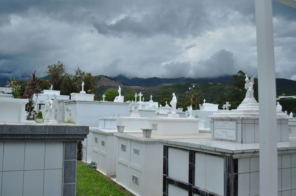 A wide view of Santa Ana Cemetery, circa 2012.