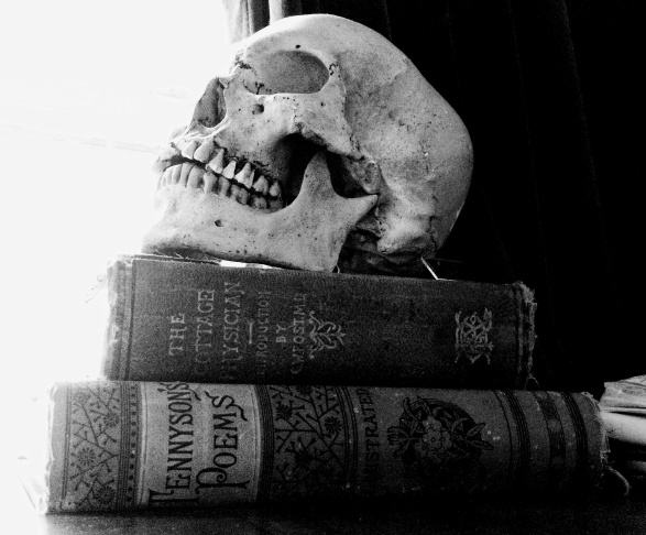 Caitlin Doughty's father's skull. No, literally. The skull he used when teaching anthropology. And of course, it has to sit on a pile of books to symbolize Death's primacy over any of man's works.