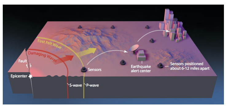 Earthquake early warning systems like ShakeAlert work because the warning message can be transmitted almost instantaneously, whereas the shaking waves from the earthquake travel through the shallow layers of the Earth at speeds of one to a few kilometers per second (0.5 to 3 miles per second). This diagram shows how such a system would operate. When an earthquake occurs, both compressional (P) waves and transverse (S) waves radiate outward from the epicenter. The P wave, which travels fastest, trips sensors placed in the landscape, causing alert signals to be sent ahead, giving people and automated electronic systems some time (seconds to minutes) to take precautionary actions before damage can begin with the arrival of the slower but stronger S waves and later-arriving surface waves. Computers and mobile phones receiving the alert message calculate the expected arrival time and intensity of shaking at your location.
