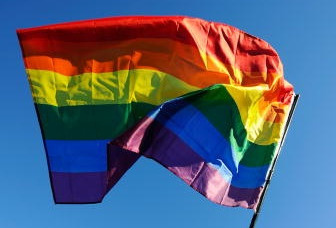 A gay pride flag flies during a same-sex marriage demonstration.