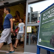 Outside Whole Foods in downtown LA, a sign directs people to not bring in their pets, only service animals.