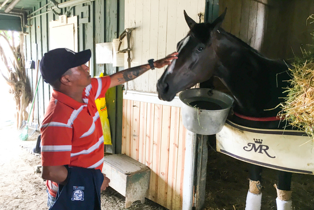 Horse groom Amir Cedeño stops to pet a horse in the stables at the Santa Anita racetrack.