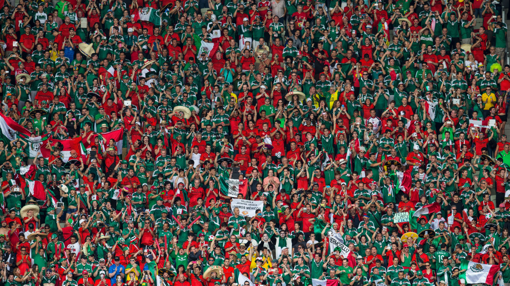 Mexico fans cheer during the 2014 FIFA World Cup Brazil Group A match between Brazil and Mexico on June 17.