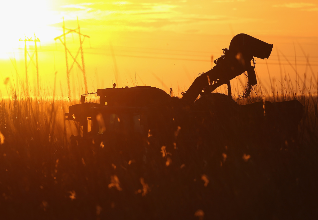 A mechanical harvester harvests sugar cane in the fields on January 28, 2014 in Clewiston, Florida. The United States House and Senate are reported to have agreed on a new five-year farm bill that will eliminate or consolidate dozens of agriculture subsidy programs, but is expected to leave in place the federal sugar program, which is a combination of import restrictions and production quotas.