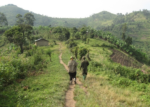 Elisa and her guide make their way towards the jungles of Uganda.