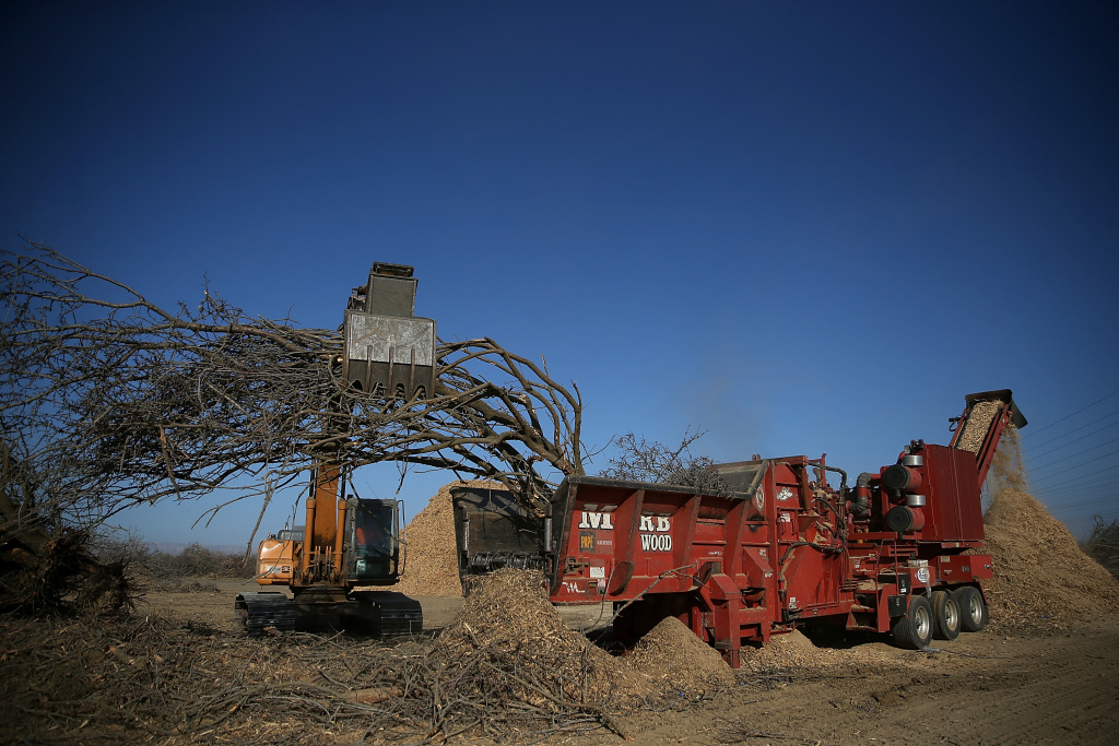 File: A tractor moves an uprooted almond tree into a shredder at Baker Farming on February 25, 2014 in Firebaugh, California.