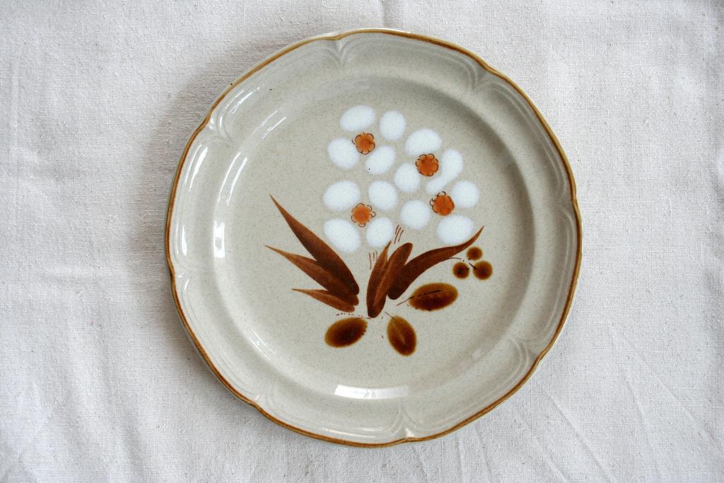 retro vintage dinner plate