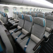 A picture shows the economy seating of t