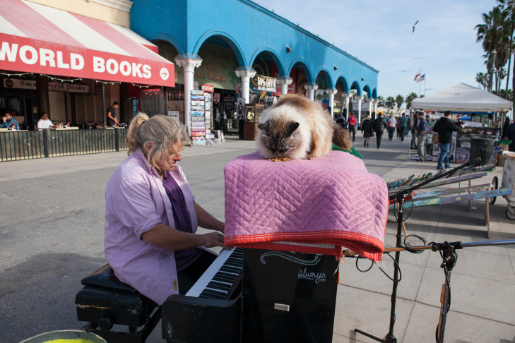 Pianist, Nathan Pino plays for tips on the Venice Boardwalk