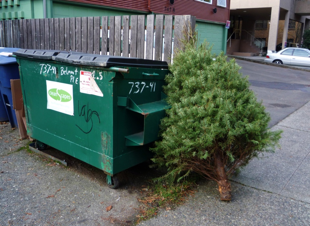 rees can be recycled and turned into mulch, so why not do that? The best way to dispose of your tree depends on where you live.