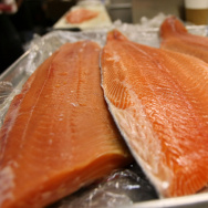 Fresh wild and  farmed Loch Duart salmon filets are seen on a tray at the San Francisco Fish Company April 11, 2008 in San Francisco, California.