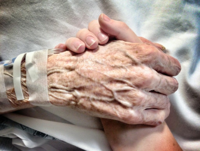 Kate Carter's contest-winning image in which she holds hands with her grandmother Jean, who passed away last week.