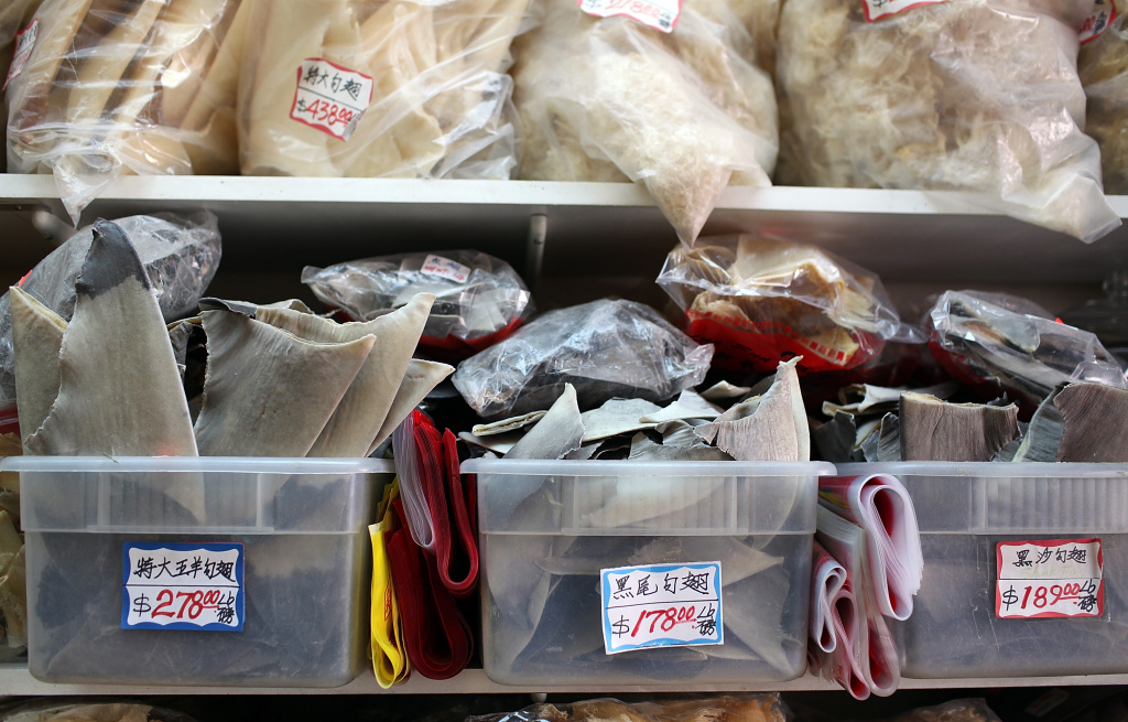 Trays filled with shark fins are displayed at a store in Chinatown on August 24, 2011 in San Francisco, California. California State Assembly Bill 376 has been introduced and would ban the sale, purchase or possession of shark fins in California. Those against the bill complain that it targets a cultural institution of Chinese citizens who eat shark fin soup.