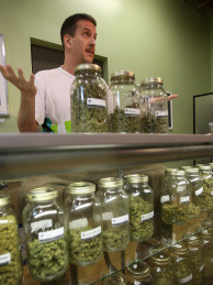 Dave Warden, a bud tender at a non-profit co-operative medical marijuana dispensary in Los Angeles, displays various types of marijuana available to patients.