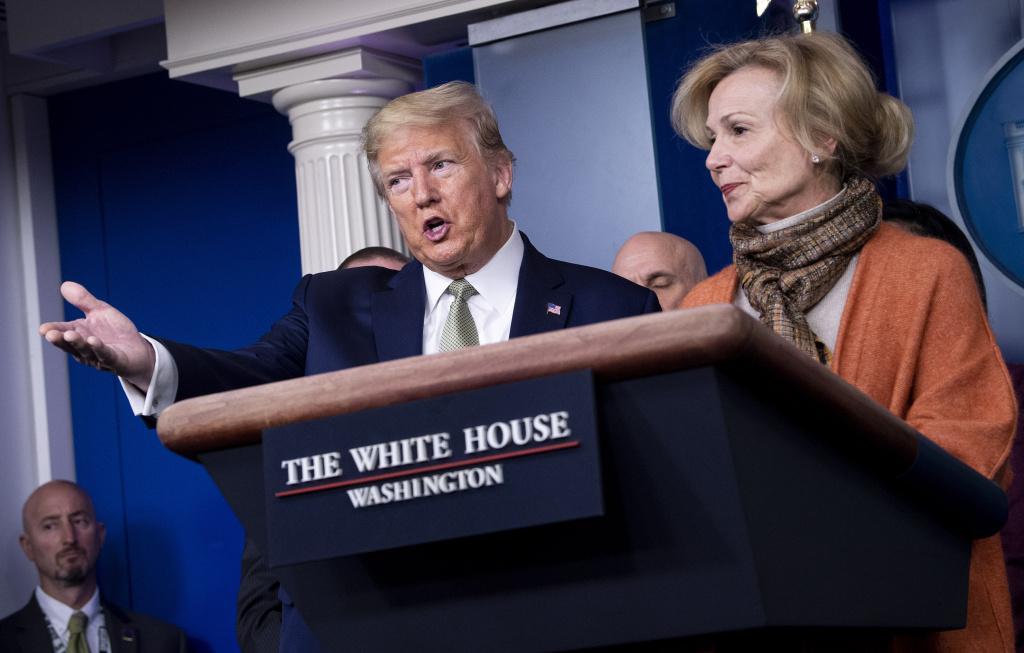 Dr. Deborah Birx, who coordinates the White House Coronavirus Task Force, criticized a test