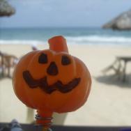pumpkin beach