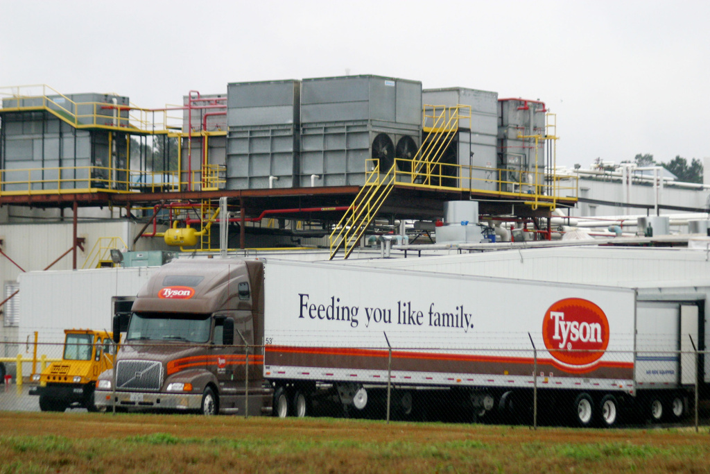 Tyson Foods intends to stop using human antibiotics in its domestic chicken flocks by September 2017, the company said Tuesday.