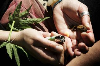 A marijuana enthusiast prepares a joint.