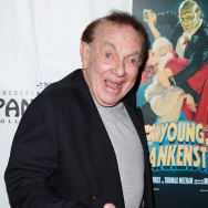 "Opening Night Of ""Young Frankenstein"" At The Pantages Theatre - Red Carpet"
