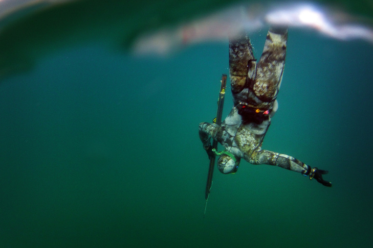 Spearfishing - 10
