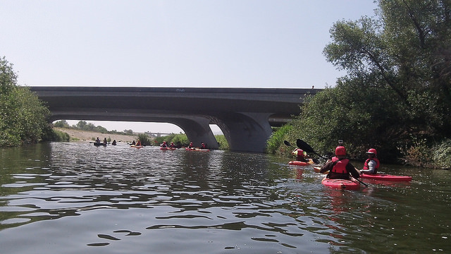 Kayakers paddle their way along the LA River through the Sepulveda Basin in the San Fernando Valley. The site is one of two, 2.5 mile stretches of the river opened to the public on Memorial Day.