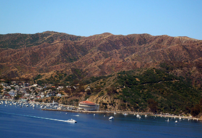 Catalina boats.