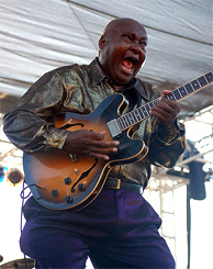 Arthur Adams performs at L.A.'s Sunset Junction Festival on August 23, 2008