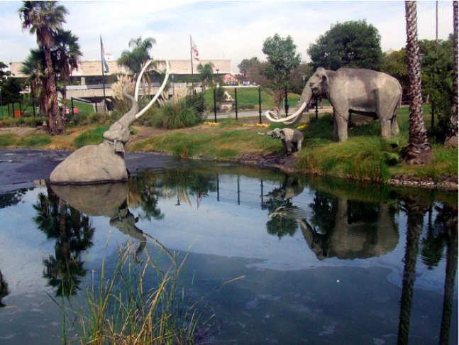 Mammoth scene at La Brea Tar Pits